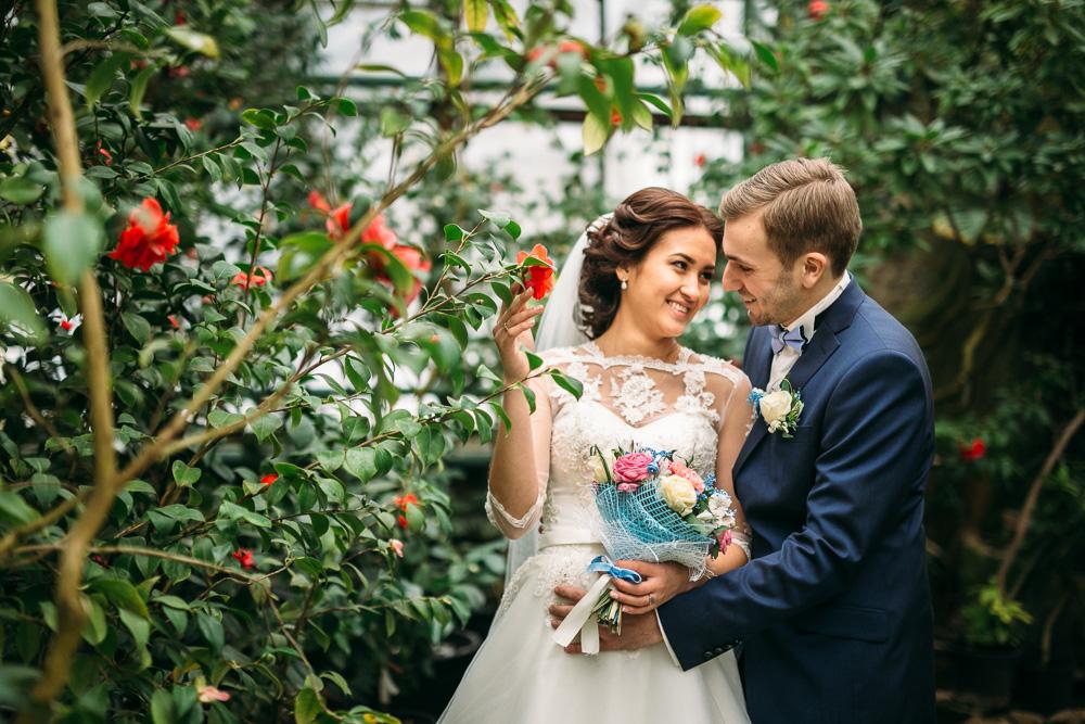 оранжерея ботанического сада спб свадебные фото известно, ирландия